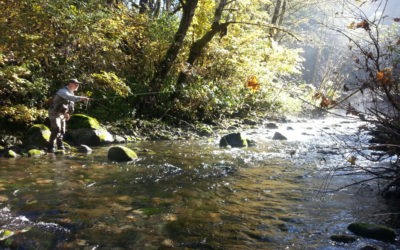 """Small Stream Dreams"" – by James Garrettson"